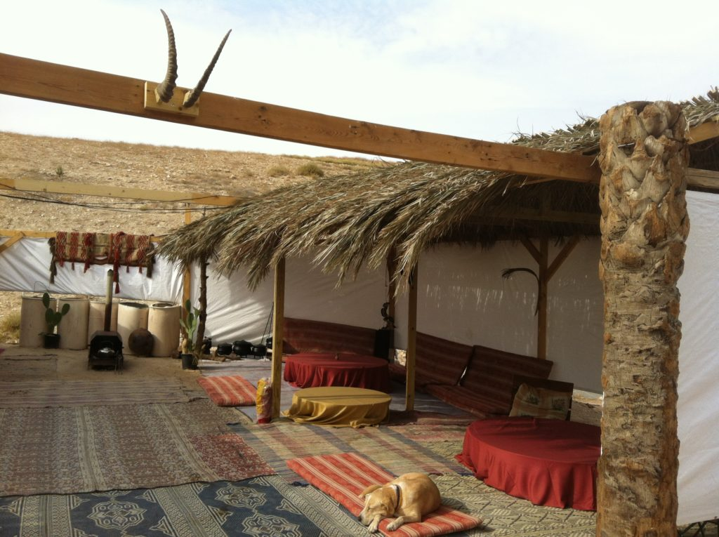 Desert Camping Israel